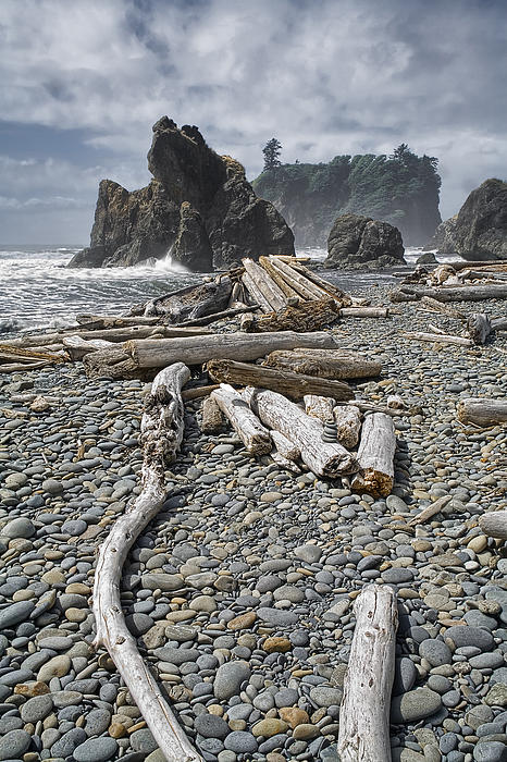 Randall Nyhof - Ruby Beach and Driftwood in Olympic National Park