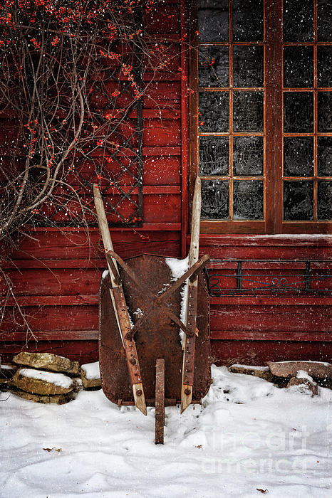 Rusty Wheelbarrow Leaning Against Barn In Winter Photograph  - Rusty Wheelbarrow Leaning Against Barn In Winter Fine Art Print