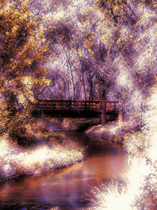 Michelle Frizzell-Thompson - Serene River Bridge