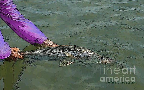 Snook Revival Painting  - Snook Revival Fine Art Print