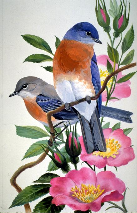 new york state bird and flower. State bird and flower of New