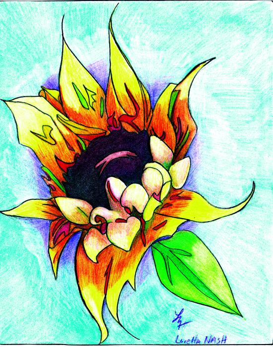 Sunflower Drawing by Loretta Nash. Tags: sunflower drawings, color pencils