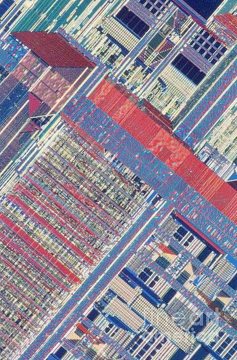 Microprocessor Photograph - Surface Of Integrated Chip by Michael W. Davidson