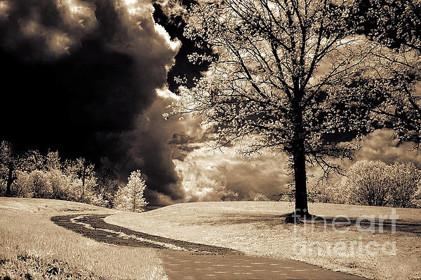 Kathy Fornal - Surreal Dark Gothic Infrared Sepia Landscape
