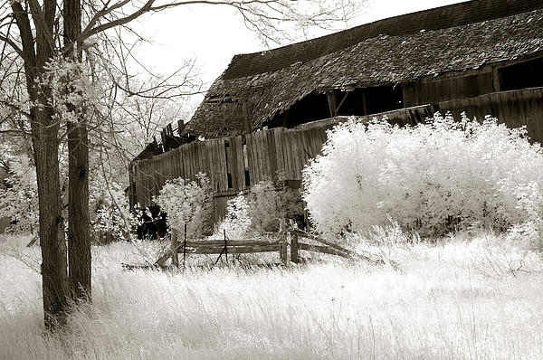 Kathy Fornal - Surreal Infrared Sepia Michigan Barn Nature Scene
