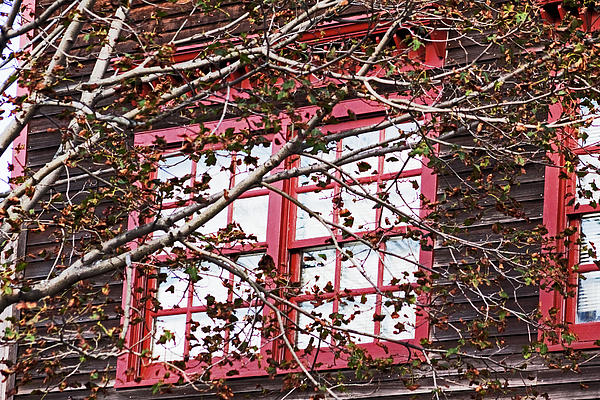 Thru The Red Window Photograph  - Thru The Red Window Fine Art Print