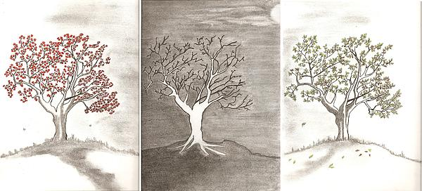 Salomi Prakash - Tree Seasons