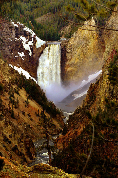 Ellen Lacey - Upper Yellowstone Falls