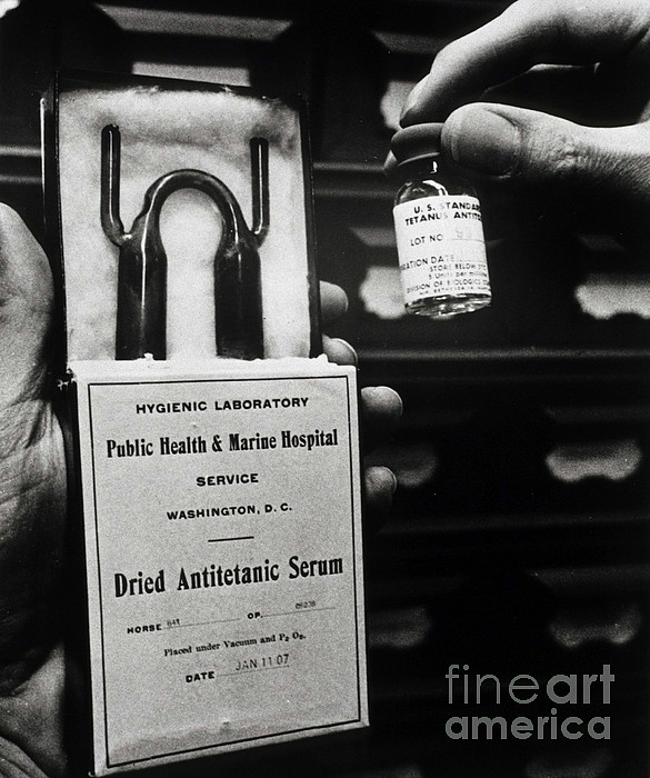 History Photograph - Vials Of Tetanus Antitoxin by Science Source