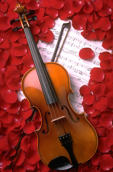 Violin Photograph - Violin On Sheet Music With Rose Petals by Garry Gay