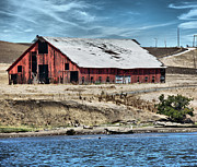 Old Barn Posters -  Barn by the River Poster by Cheryl Young