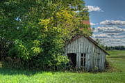 Old Shack Photos -  The Old Buzzard Barn by Pamela Baker