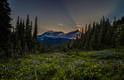 Northwest Art - Alpine Meadow Sunrays by Mike Reid