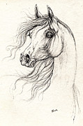 Horse Drawings - Arabian Horse Drawing A  13 08 2013 by Angel  Tarantella