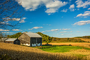 Cornfield Photos - Autumn Barn by Steve Harrington