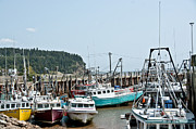 Cheryl Baxter Metal Prints - Fishing Boats Metal Print by Cheryl Baxter