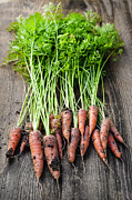 Wooden Table Framed Prints - Fresh carrots from garden Framed Print by Elena Elisseeva