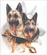 German Shepherd With Ghost Image Fine Art Print by Barbara Keith