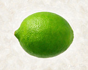 Organic Paintings - Lime by Danny Smythe