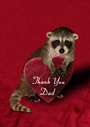 Jeanette Kabat - Thank You Raccoon