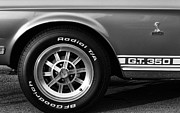 Gordon Dean II - 1968 G.T. 350 Shelby Cobra Ford Mustang