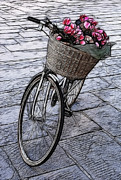 Lucca Metal Prints - Bicycle In Lucca Italy Metal Print by Bob Christopher