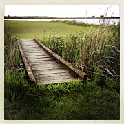 Wetland Posters - Boardwalk  Poster by Les Cunliffe