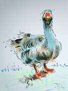 Geese Drawings Prints - Goose drawing Print by Mike Jory