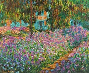 Garden Scene Mixed Media Prints - Irises In Monets Garden enhanced Print by Claude Monet - L Brown