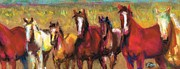 Horse Drawings Posters - Mares and Foals Poster by Frances Marino