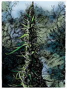 Cultivation Mixed Media Posters - Overripe Bud Poster by Joseph Juvenal