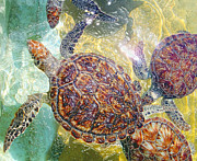 Carey Chen - Cayman Turtles
