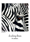 Will Posters - Do Zebras Dream In Color? Poster by Will Bullas