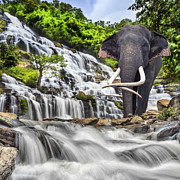 Elephant Rock Prints - Mae Ya waterfall Print by Anek Suwannaphoom