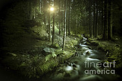 World Rock Posters - Small Stream In A Forest At Sunset Poster by Evgeny Kuklev