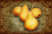 Pear Art Mixed Media Posters - 4 Little Pears Are We Poster by Andee Photography