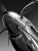 Black And White Prints - P-51 Mustang Print by John  Hamlon