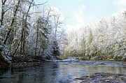 Trout Prints - Winter along Williams River Print by Thomas R Fletcher