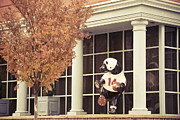 Football Mixed Media - A Bear In Boyertown by Trish Tritz