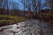 Billie Creek Art - A Creek Runs Though It by Thomas Sellberg