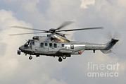 Featured Metal Prints - A Eurocopter As532 Cougar Of The Royal Metal Print by Remo Guidi
