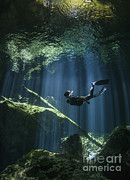 Water In Cave Prints - A Freediver In Taj Mahal Cenote Print by Karen Doody