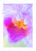 Tropical Art Pastels Posters - Abstract Orchid Pastel Poster by Antony McAulay