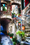 Potted Flowers Prints - Alley and  Stairs in Corniglia Print by George Oze
