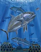 Carey Chen - Amberjack In0029
