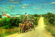 Amish Photos - Amish Road by Thomas Danilovich
