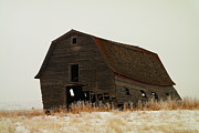 Yesteryear Photos - An Old Leaning Barn In North Dakota by Jeff  Swan