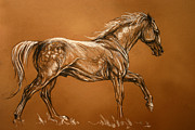 Horse Drawing Framed Prints - Andalusian Horse soft pastel drawing Framed Print by Angel  Tarantella