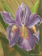 Mj Paintings - Andys Iris by Mj Deen