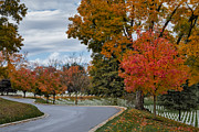 Seasons Posters - Arlington National Cemetery In Autumn Poster by Susan Candelario